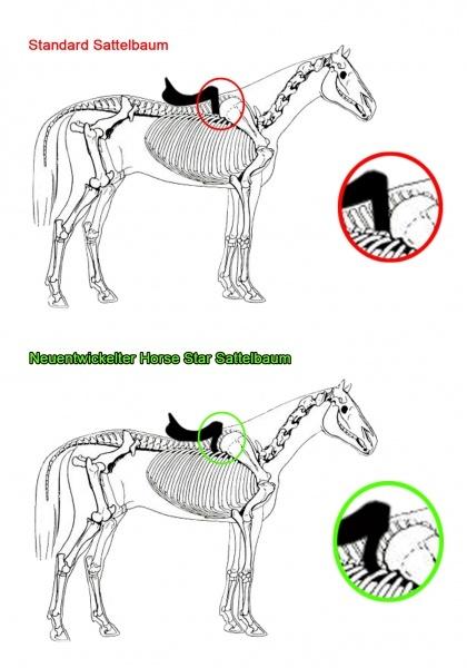 Französische Kissen Sattel.Horse Star Champion Dressur Sattel